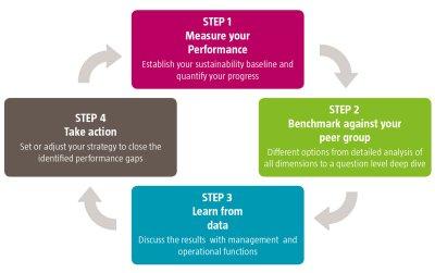 Benchmarking Cycle